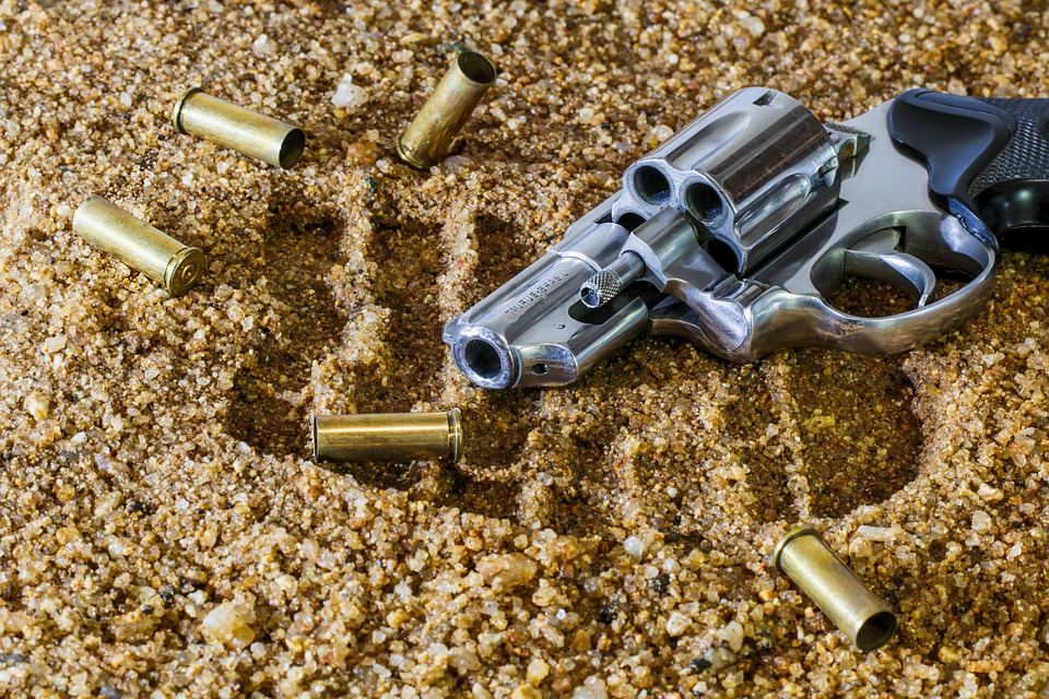 Real Estate Agents – Inform Your Clients Who Own Firearms About Homeowners' Insurance